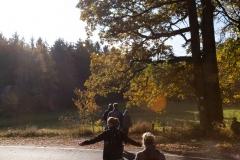 Herbstliche Wälder bei Castell