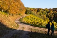 Herbststimmung Indian Summer Castell Schloßberg